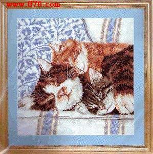十字绣图纸:睡觉猫咪 免费